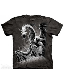 Black Dragon - T-shirt - The Mountain