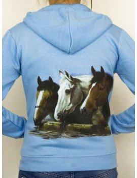 Horse jacket with hood