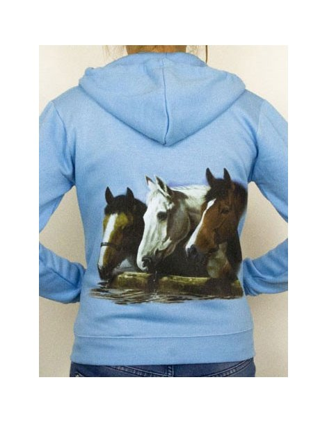 Horse jacket with hood