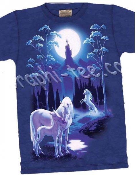 AU royaume des licornes