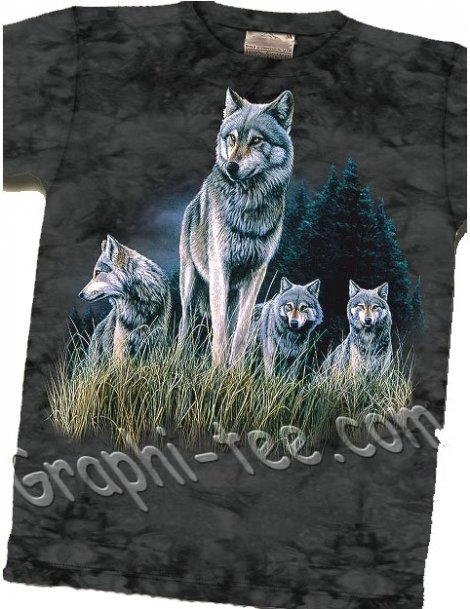 wolves in grass